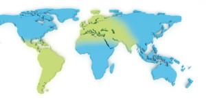 Irua suministra válvulas principalmente en Europa, India, norte de África y Latinoamérica.
